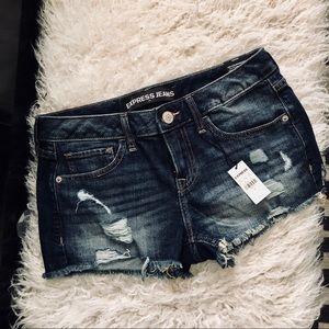 express Distressed shortie shorts